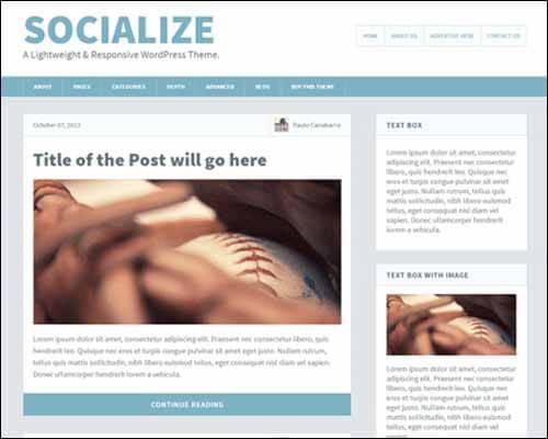 Socialize_Lite_WordPress-Gratis-Blog