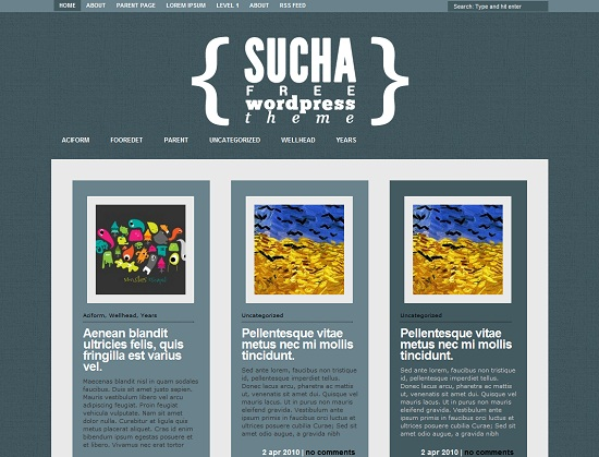 Sucha-Tema-WP-gratis