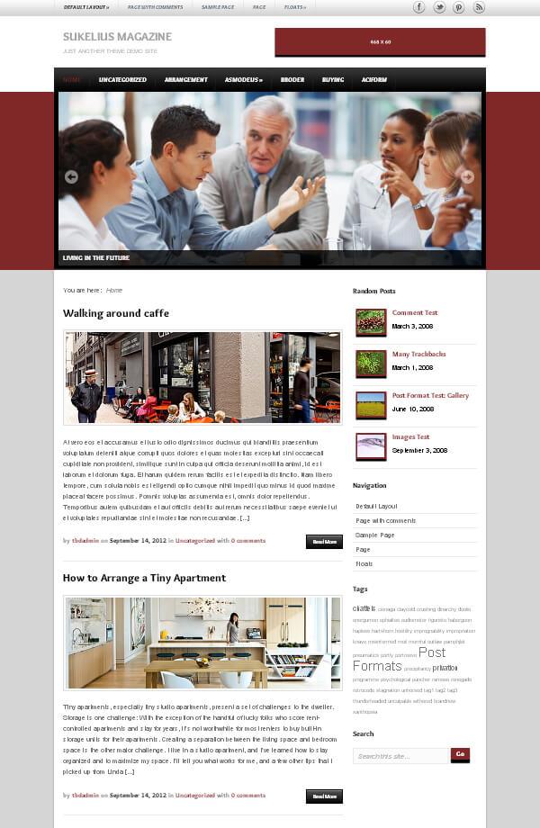 Sukelius-Magazine-News-WordPress-Gratis-Theme