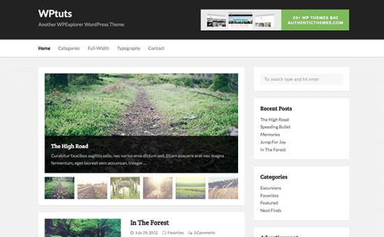 I migliori temi per WordPress Gratis con grafica Professionale
